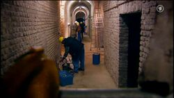 Königsbrunn cellar working