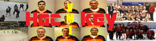 File:VMI collage 2.png