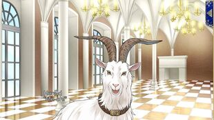 Herald Goat