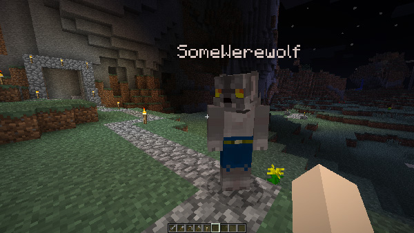 File:Minecraft dfwerewolf01.jpg