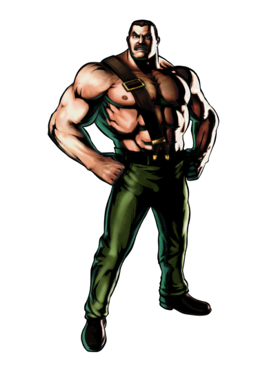 Mike Haggar Final