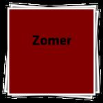 ZomerIcon