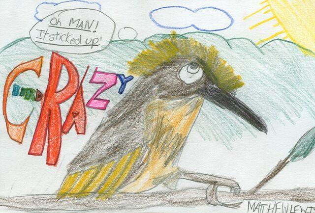 File:Matthew Lewis Crazy Bird.jpg