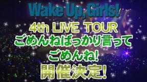 4th live tour visual