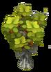 Api Tree