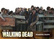 74 Roaming Death