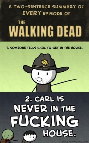 File:Funny-Walking-Dead-Carl-TV-series-434x698.jpg