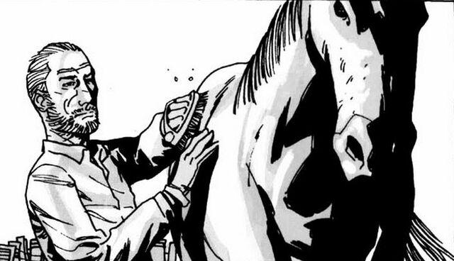 File:Horse 5 Issue 12.JPG