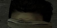 Roberto (Video Game)