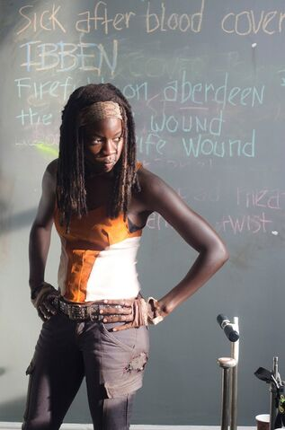 File:Clear Michonne.jpg