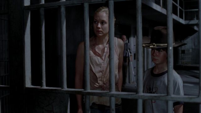 File:The Walking Dead S03E08 Made To Suffer 1080p kissthemgoodbye net 2435.jpg