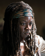 Season 5 Michonne