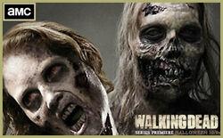 Walkingdeadpic -9