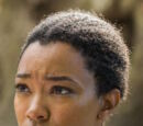 Sasha Williams (TV Series)