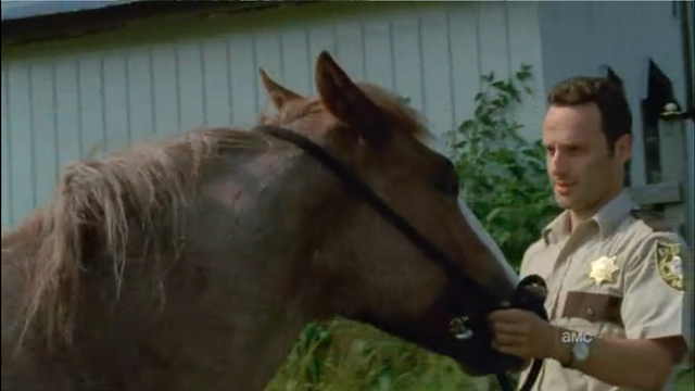 File:Horse and rick4.png