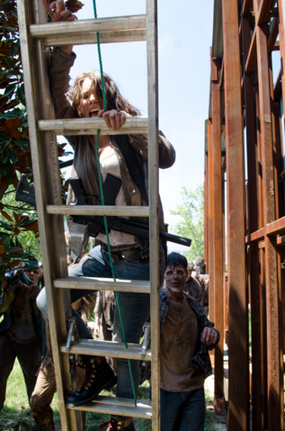 File:AMC 608 Maggie Climbs Ladder.png