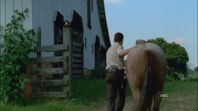 File:Horse and rick5.png