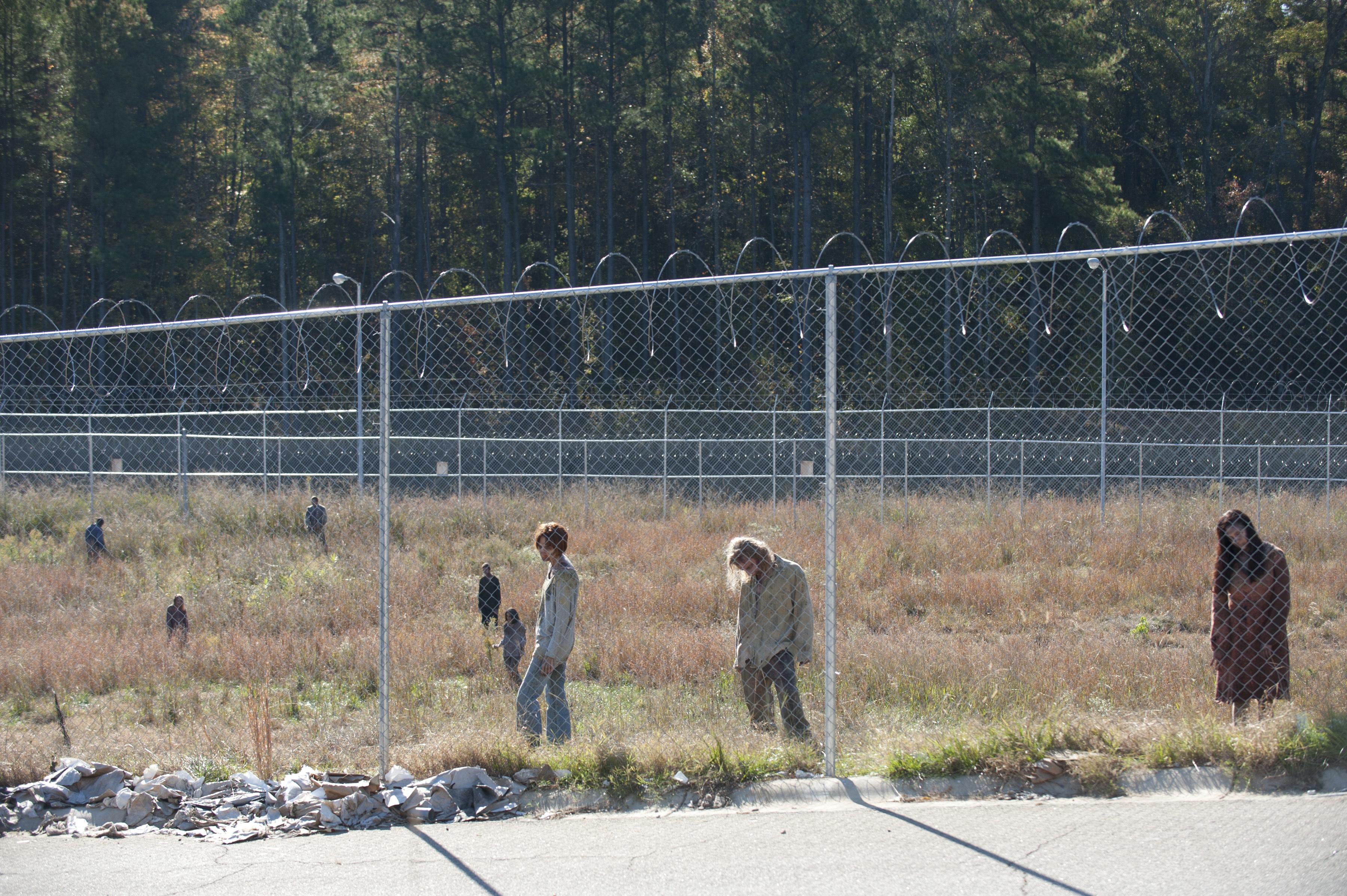 File:The-walking-dead-season-3-episode-15-this-sorrowful-life-5 FULL.jpg