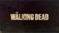 Thumbnail for version as of 21:03, November 17, 2012
