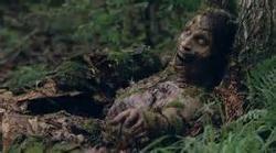 File:Walker woods.jpg