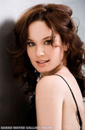 Sarah Callies Or Sarah Wayne Callies-0025