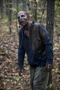Walker (Us)