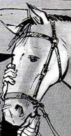 File:Horse sopafj.JPG