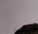 "Smith & Wesson 3913 ""Ladysmith"""