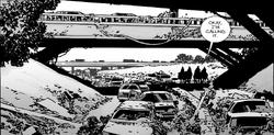 Issue 133 Bridge