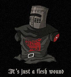 File:Just a flesh wound mate.jpg