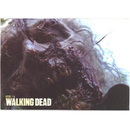 The Walking Dead - Sticker (Season 2) - S21