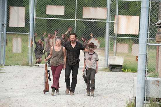 File:TWD The Suicide King.jpg