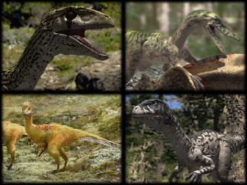 RaptorsCollage