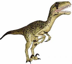 File:UtahraptorModel.jpg