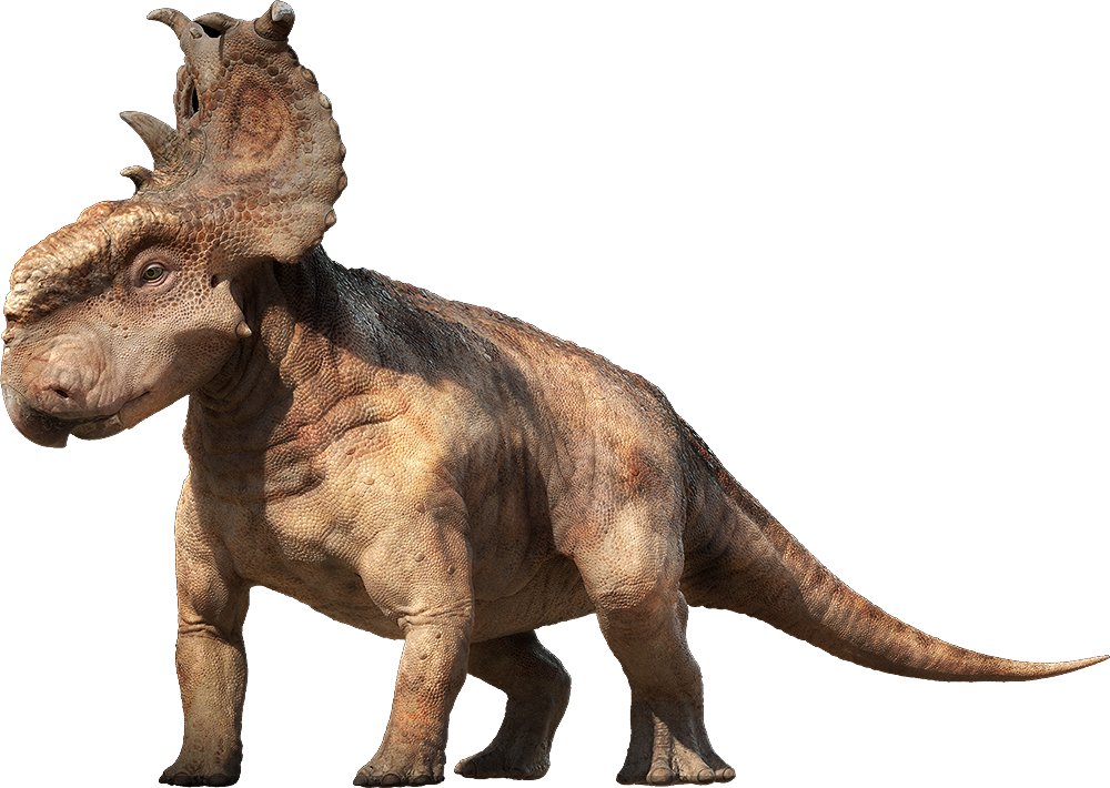 pachyrhinosaurus vs carnotaurus - photo #12