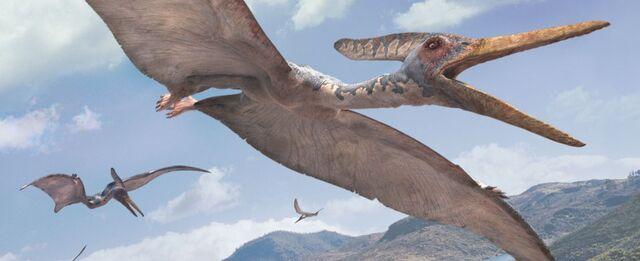 File:Pteranodon-WWD.jpg