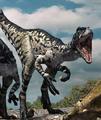 Dromaeosaur new new.png