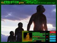 Evolution ad australopithecus
