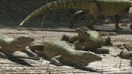WWM1x3 FloatOfChasmatosaur