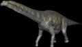 Agertinasaurus.png