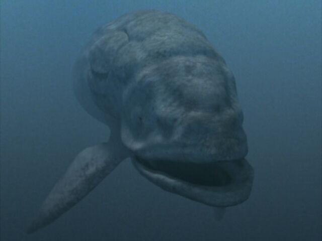 File:SM1x3 Leedsichthys.jpg