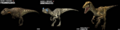 Coelurosaurs.png