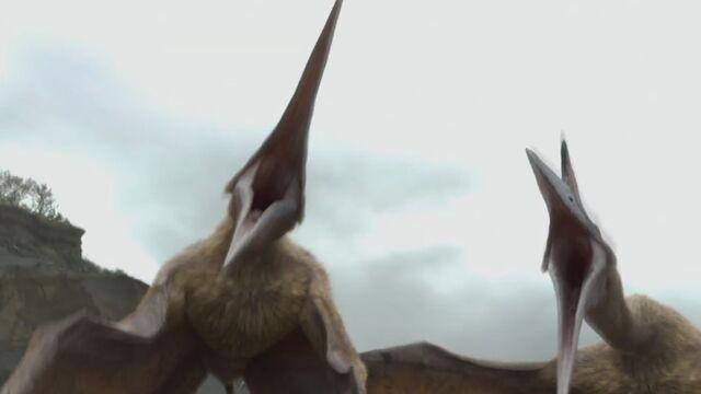 File:Movie QuetzalcoatlusScreeching.jpg