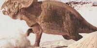 Protoceratopsid