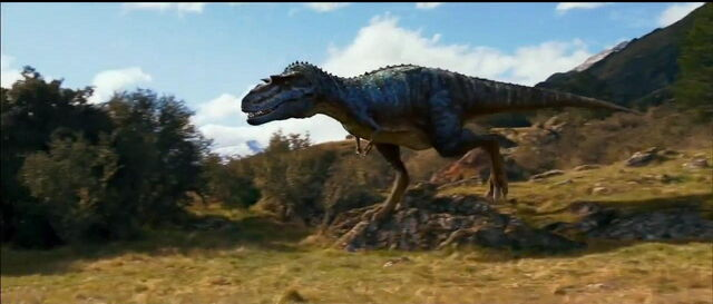 File:Gorgosaurus 10.JPG