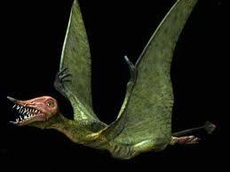 Rhamphorhynchus!