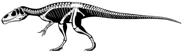 File:800px-Eustreptospondylus oxoniensis skeleton.png