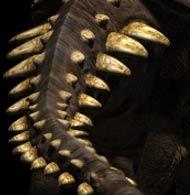 File:Polacanthus p2.jpg