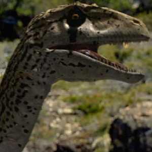 File:Utahraptor