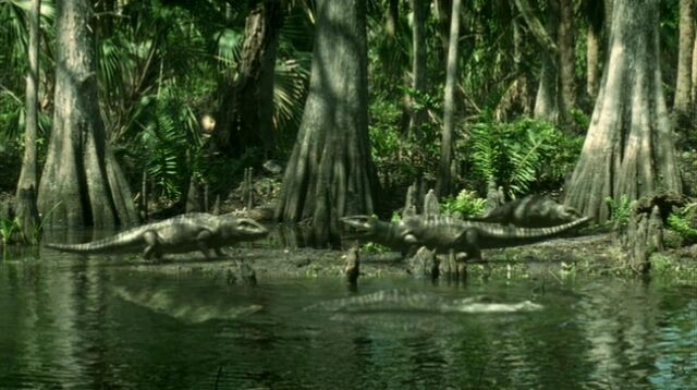 File:Amphibian gang.jpg